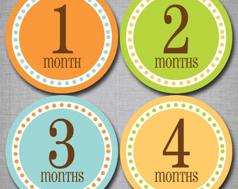 Baby Monthly Stickers Milestone Monthly Stickers Neutral Stickers Month by Month [N006]