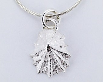 Silver Shell Pendant Necklace, Limpet Shell , Sea Shell Pendant, Dainty Silver Necklace, Beach Jewellery, Limpet, Mary Colyer Jewellery