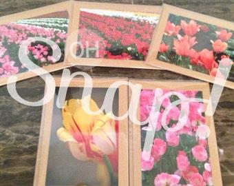 Vibrant tulip notecards