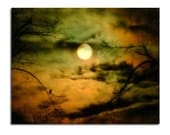 Full Moon Image, Surreal Night Crow Photo, Raven Art, Otherworldly Image,Moonlight, Mystical Clouds Print, Moonlit - Moody Sky