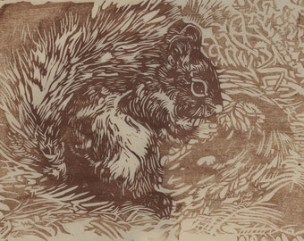 Red Squirrel Eating an Acorn in a Forest Hand-lifted Woodblock Print