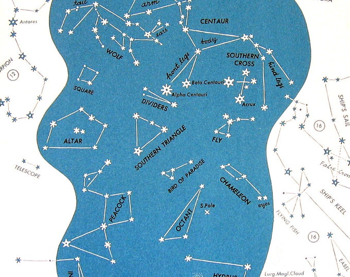 family constellation chart Family constellations ireland offers group workshops and individual counselling sessions to support people in their everyday lives.