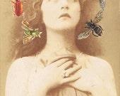 victorian art print by kitty valentine - mademoiselle diament & her beguiling insect halo