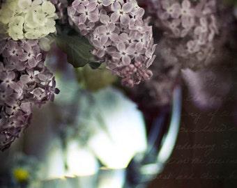 lilacs boquet, Spring still life photography nature home decor bathroom decor Mothers Day