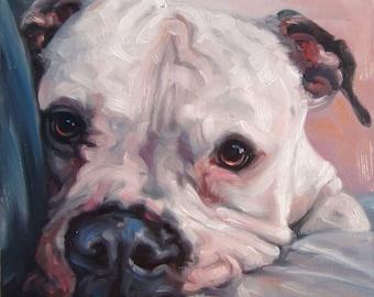 "DocileDozer, CUSTOM Pet Portrait Oil Painting by puci, 8x8"""
