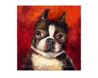 Boston Terrier Art, Pet Portrait, Miniature Dog Art Print, Big Eye, Lowbrow Art, Dog Portrait