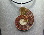 mens necklace. ammonite necklace in sterling silver and black leather. natural fossil necklace.