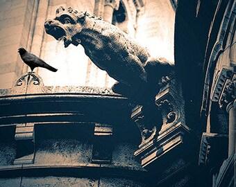 Paris Photography, Gothic Gargoyle Print Wall Art, Paris Sacre Coeur Cathedral Gargoyles, Paris Gargoyle Raven, Gothic Paris Photography Art