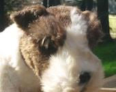 Avanti Terrier, 83 realistic Fox Terrier by Avanti w tag, collectible Plush