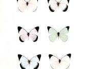 Pastel Butterfly Print, Baby Girl Nursery Decor, Mint Pink Blue, Nature Photography, Butterflies