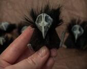 Corvie Abdab - spooky crow skull Halloween plushie