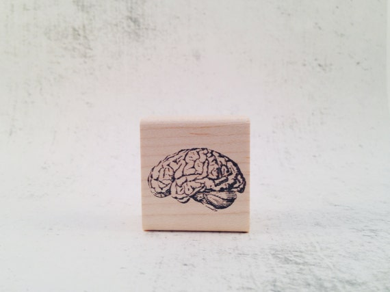 The Vintage Style Brain Anatomy Rubber Stamp