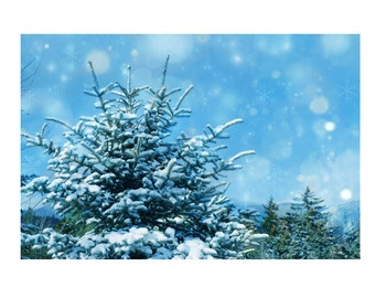 Winter photography, pine trees, starry sky, Adirondack Mountains, snow, blue, mint, ice blue, soft,zen, happy, nursery, childrens decor
