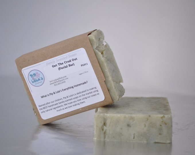 Get the Crud Out Oily Skin Soap --  Lavender Tea Tree All-Natural Soap, Handmade Soap, Vegan Soap, Oily Facial Soap, French Clay Soap