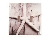 Double Toggle Switch Plate, Black and White Starfish