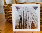BLONDE, Equine Art Card, Greeting card, Horse photography, Rustic, fall colours