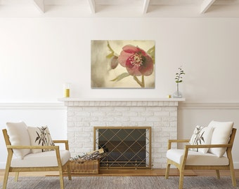 Flower Canvas, Shabby Chic Decor,  Grey and Rose Pink Photography, Large Picture, 11x14 Photograph
