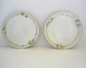 Vintage Bavarian Plates Set of 2 Unmarked Blue Rim with Roses Vining In a Round Pattern