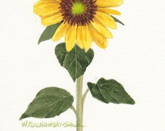 Sunflower 5x7 Original Watercolor by Wanda Zuchowski-Schick