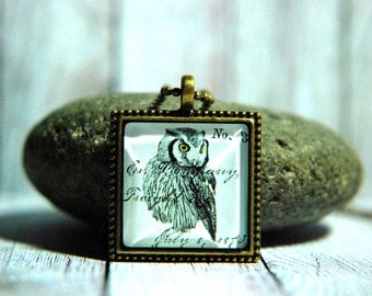 """1"""" Square  Glass Pendant Necklace or Key Chain - Grey Owl"""