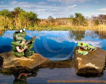 Frog Concert, Music Art Print, Rock Band Concert, Music Art
