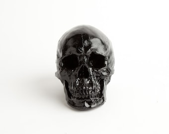 The X-LARGE Griffin - Extra Large Matte Black Faux Human Head Halloween Decor  - Resin Skeleton Skull - Sugar Skull Like- - Halloween Skull