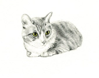 "Mr. Kitty Kat art print of an original drawing available 5x7"" or 8x10"""
