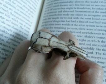 Resin cast rat skull ring Plain