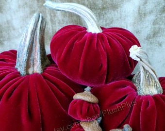 VELVET PUMPKIN & ACORN set - Real Pumpkin Stems and Real Acorn Caps - Raspberry
