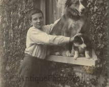 Handsome boy posing with dogs puppy on window sill antique art photo