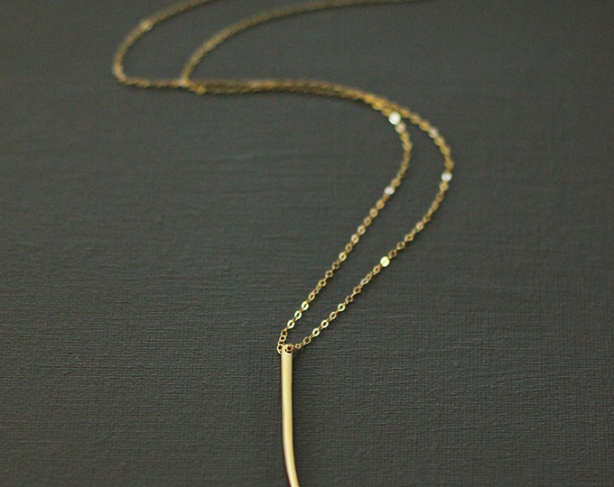 Long Gold Horn Necklace