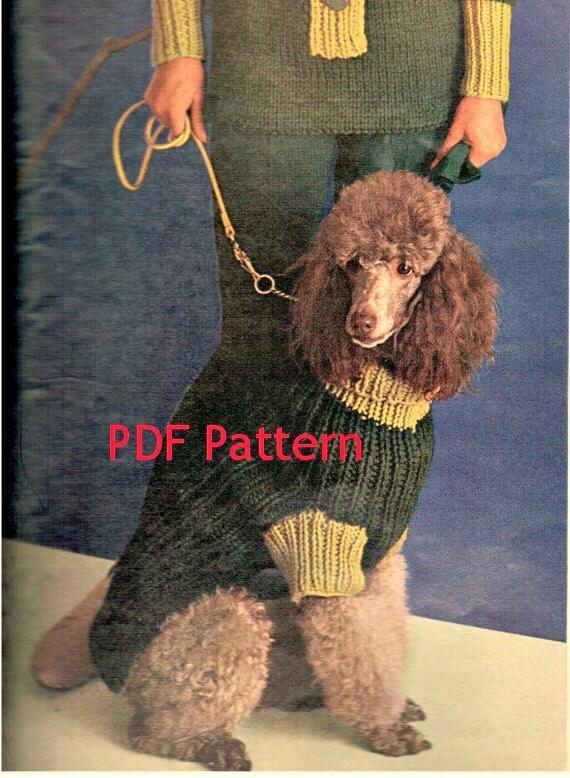 Vintage 1960s Dog Sweater Knitting Pattern in Sm, Med, Lg Sizes Digital Download