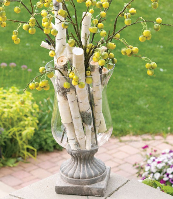 Items Similar To Birch Tree Branch: White & Gray, Rustic