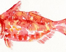 Watercolour Print of a Red Mullet Fish