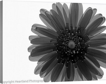 Large Daisy Canvas, Black and White, Macro Photography, Flower Photo Canvas, Nature Photography, Detailed Flower, Large Canvas Art, Wall Art