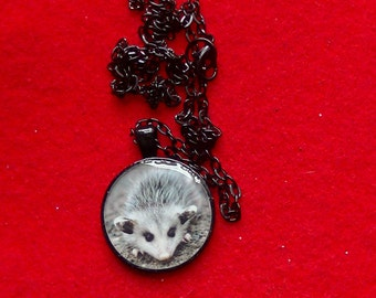 Opossum Necklace Cute Wild Opossum Black Resin Metal Round Pendant Necklace - MADE TO ORDER