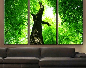 """Huge 3 Panels framed 1.5"""" depth Art Canvas Print beautiful Tree Forest green leaves under the sun Wall home office decor interior"""