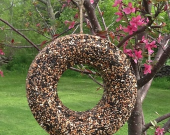 Bird Seed Wreath Bird Feeder Hanging Feeder Bird Lover Wedding Gift Housewarming Gift Garden Decor Trees  Wildlife Seed Feeder Birdseed