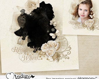 Photoshop Collage Template for Photographers - Wall Art Template Harmony Vol.1- Digital Scrapbook Template with Photo Mask, D009