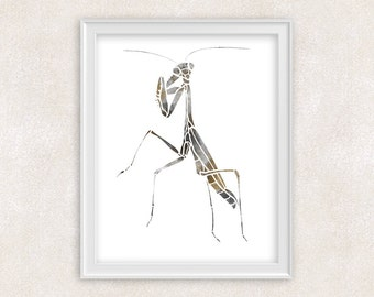 Mantis Insect Watercolor Print - 8x10 Wall Art - Home Decor - Item #702C