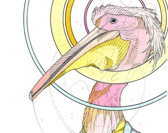 Business Pink Pelican- Limited Edition Fine Art Print 5x7.