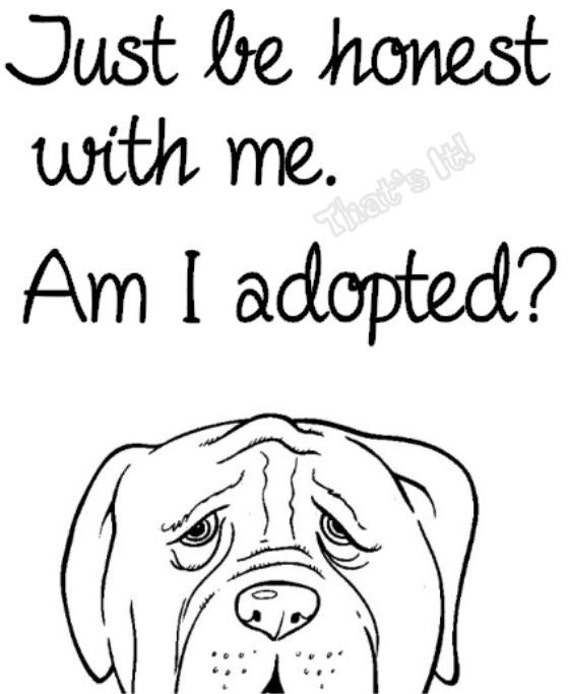 Black And White Coloring Pages Of Animal Shelters Coloring Pages