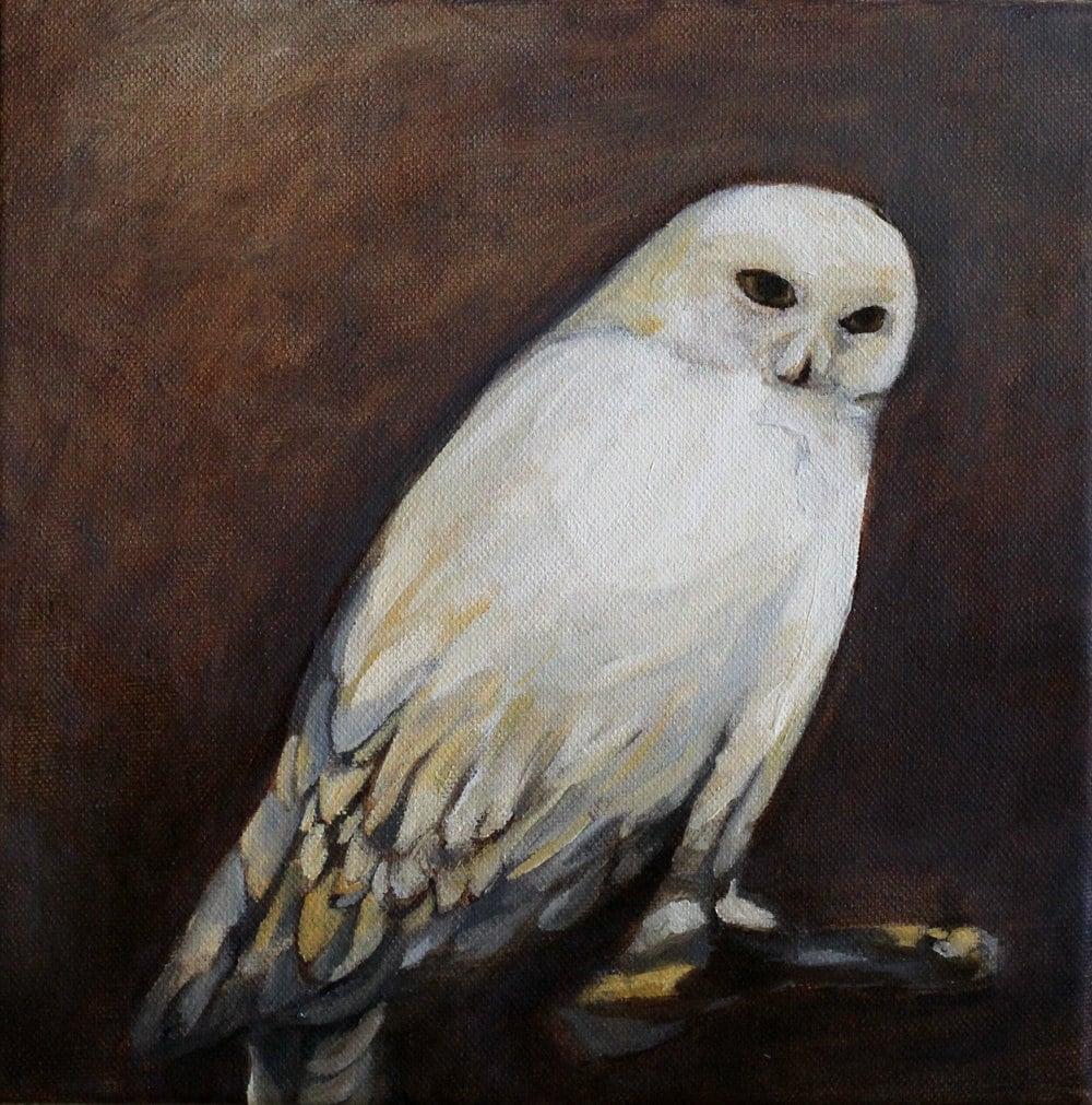Owl painting original oil painting giclee print / Snowy Owl