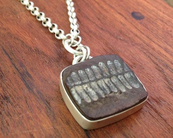 Sterling Silver Necklace, Fern Fossil