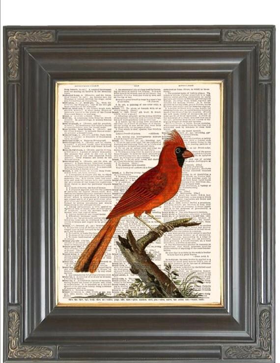 Red Cardinal Bird Print On Dictionary Coupon Sale Dictionary Home Decorators Catalog Best Ideas of Home Decor and Design [homedecoratorscatalog.us]