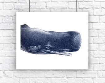 Large Blue Whale Portrait Nautical Vintage Style Art Print Beach House Decor