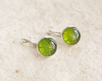 Nasturtium real leaf earrings - green handmade jewelry - Tropaeolum majus