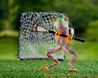 Lacrosse art, frog playing lacrosse, game of lacrosse, high school college sports art