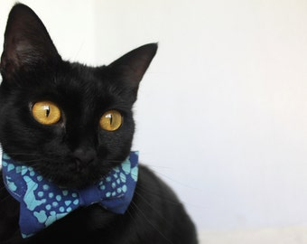 Blue Shirt Collar with Light Blue Bow Tie
