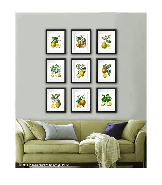 Kitchen Wall Decor Fruits Wall Decor Botanical Prints Set of